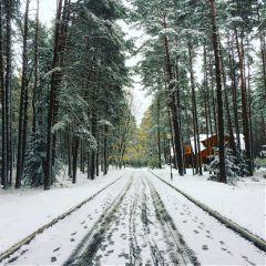 freetoedit winterforest