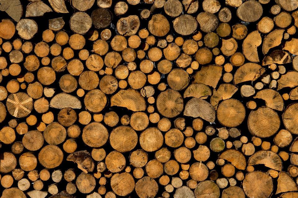t e x t u r e #texture #woods #firewood #freetoedit