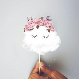 flowercrown clouds cute edited freetoedit