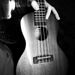 freetoedit ukulele blackandwhite love beautiful