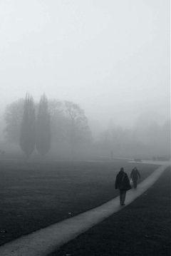 fog mist winter freetoedit
