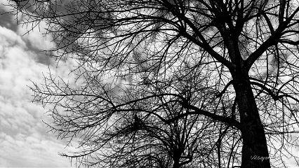 blackandwhitenature clouds blackandwhite emotions