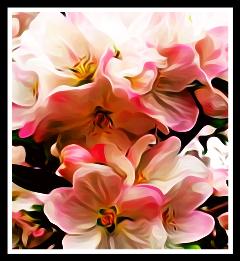 freetoedit flowers oilpaintingfx prettyinpink remixed