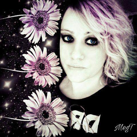 freetoedit beautiful flowers sunflowers my