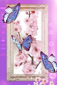 freetoedit dailyremix cherryblossoms butterflies mirrorremix